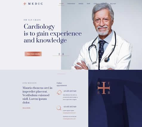 Modelo 2 médicos
